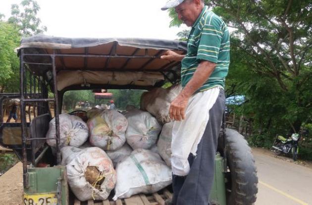 Exportación de ñame