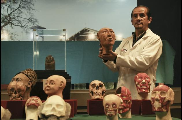 El antropólogo forense Luis Castedo muestra uno de los tres cráneos con deformación, reconstruidos a través de técnicas pioneras en Bolivia, durante una presentación a medios hoy, jueves 17 de mayo de 2018, en el Museo Nacional de Arqueología en La Paz (Bolivia).