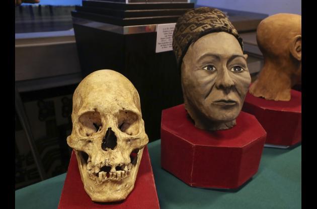 Vista de uno de los tres cráneos con deformación, reconstruidos a través de técnicas pioneras en Bolivia, durante una presentación a medios hoy, jueves 17 de mayo de 2018, en el Museo Nacional de Arqueología en La Paz (Bolivia).