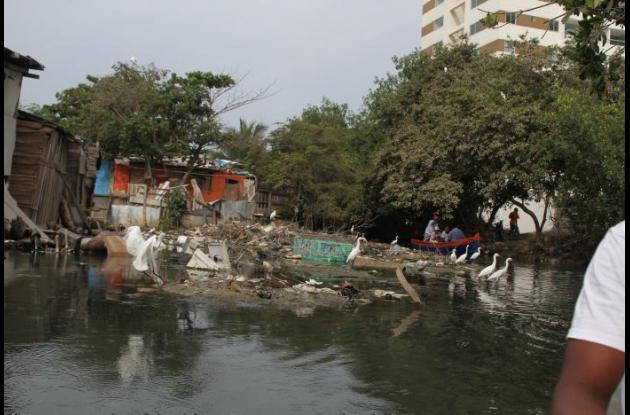Vista del caño Juan Angola