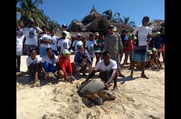 Personas liberando a una tortuga