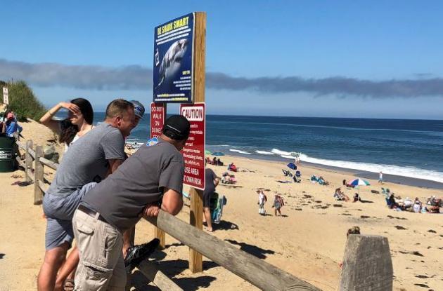 Personas en una playa