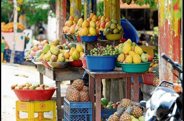 Las frutas y hortalizas van a tener un mercado competitivo en las exportaciones
