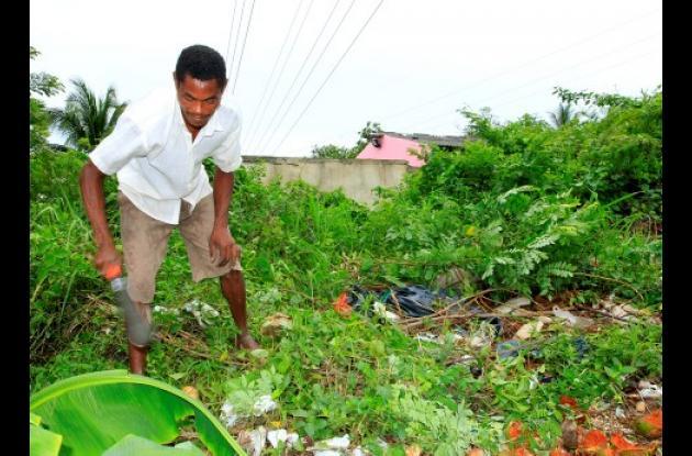 La aparición de culebras mantiene alerta a los vecinos, principalmente porque en el sector hay muchos niños. Los vecinos han tenido que intervenir el lote privado.
