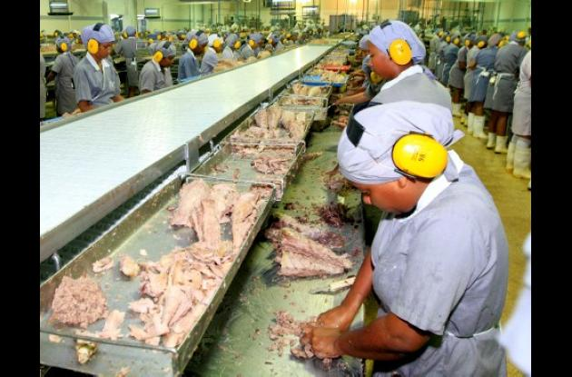 En Cartagena podrían quedar cesantes cerca de 2.000 empleados de Atunes de Colombia, por la falta de materia prima durante algunos meses del año.