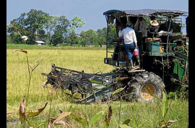 El gremio de los agricultores asegura que no hay crisis en el sector