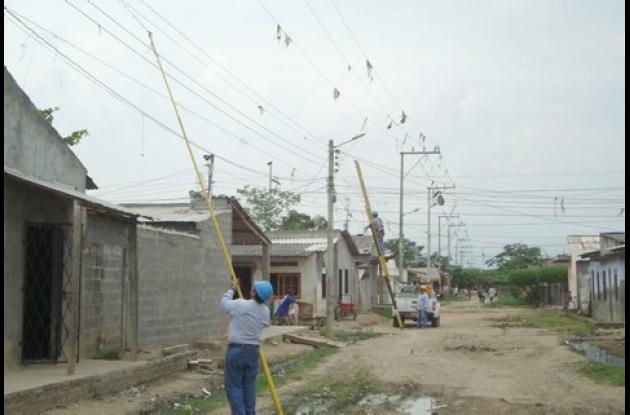 Limpian redes de energía en Cantaclaro.
