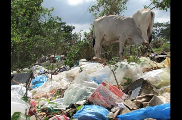 Los basureros satélites siguen en Turbaco pese a la operación de la nueva empres