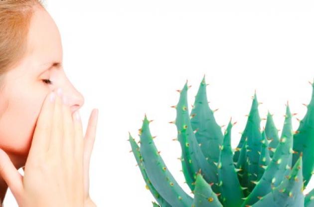sintomatologia del acido urico alto vegetales contra la gota que consecuencias tiene el acido urico en la sangre