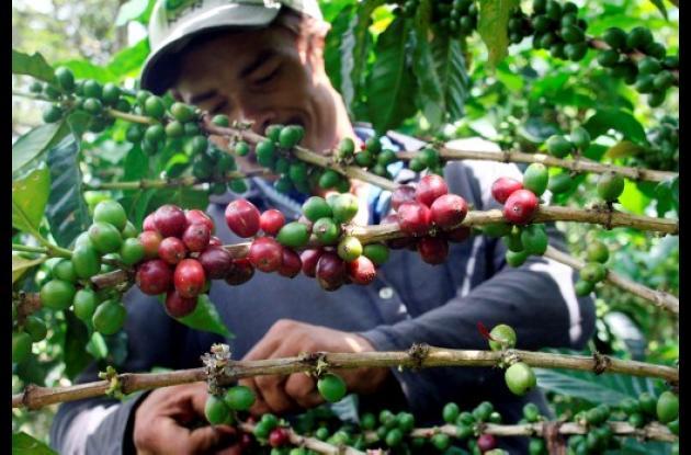 El Paisaje Cultural Cafetero se suma a los seis bienes colombianos que ya están