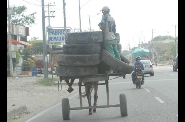 carro de mulas cargado con basura