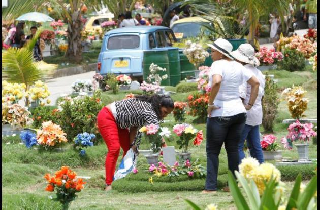 Jardines de Cartagena, Jardines de Paz y los cementerios de Manga, Albornoz, Ter