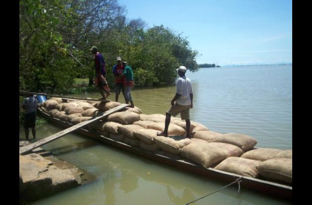 El transporte del arroz se ha encarecido
