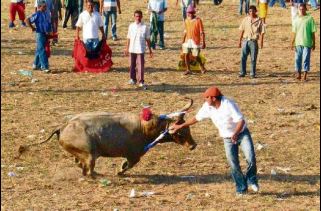 fiestas de toros en Cereté.