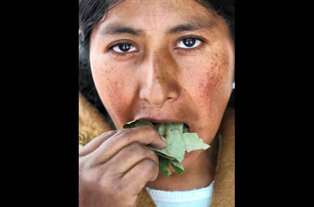Bolivia defiende el masticar hojas de coca.