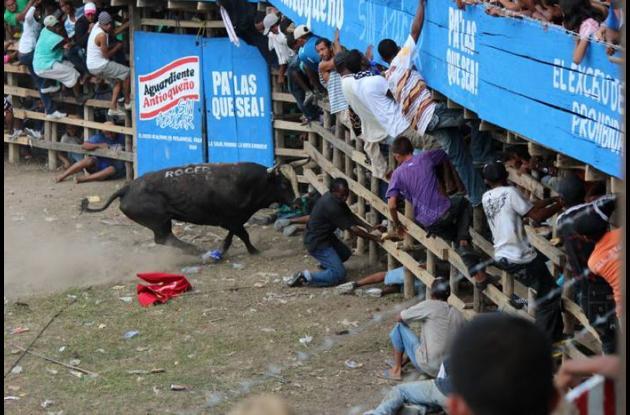 Las fiestas de toros en corraleja en Arenal son una tradición de tiempos inmemor