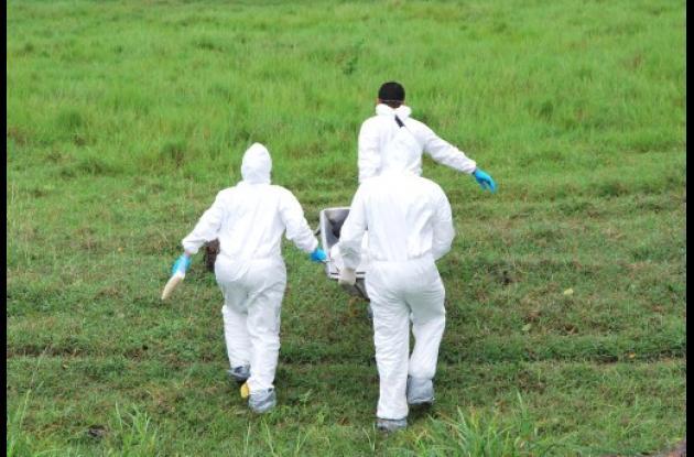 Asesinato en vereda El Ñeca, corregimiento de Santa Clara de Montería