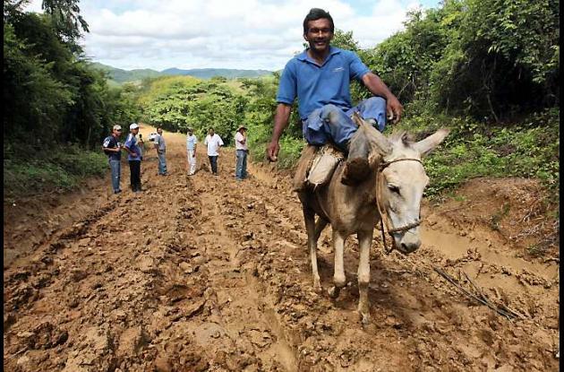 Desplazados del corregimiento Las Palmas, jurisdicción de San Jacinto, en los Mo
