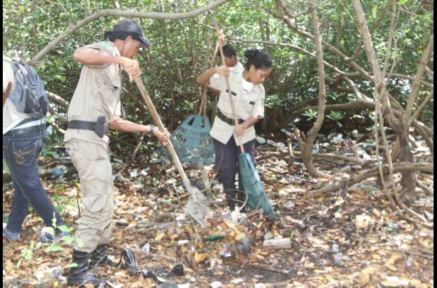 Limpieza al espíritu del manglar
