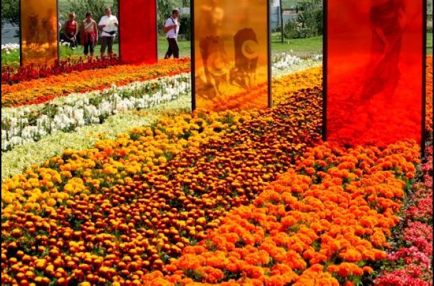 flores colombianas