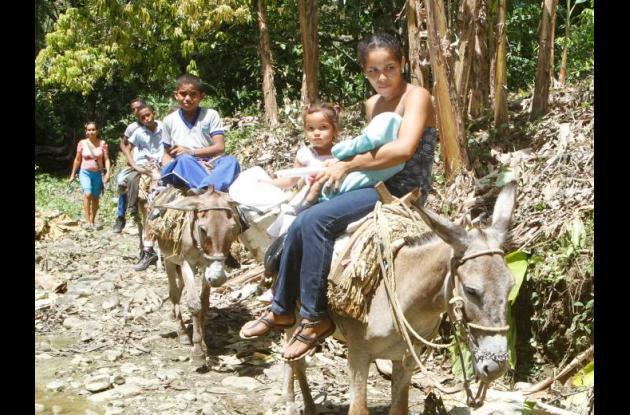Los burros son el medio de transporte que utilizan los estudiantes para llegar a