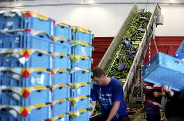 Líbano prohíbe importación de hortalizas.