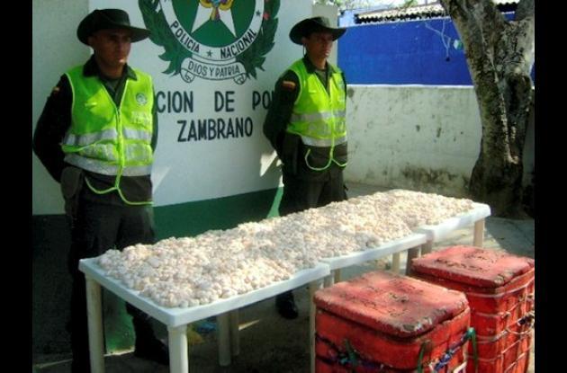 Los huevos de iguana fueron decomisados cerca de Zambrano.