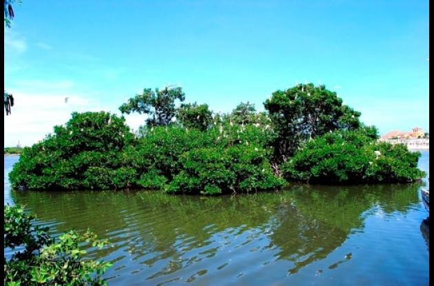 La Isla de los Pájaros es un ecosistema que todos debemos cuidar.