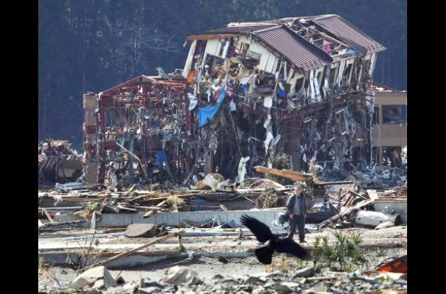 Terremoto y  tsunami de Japón.