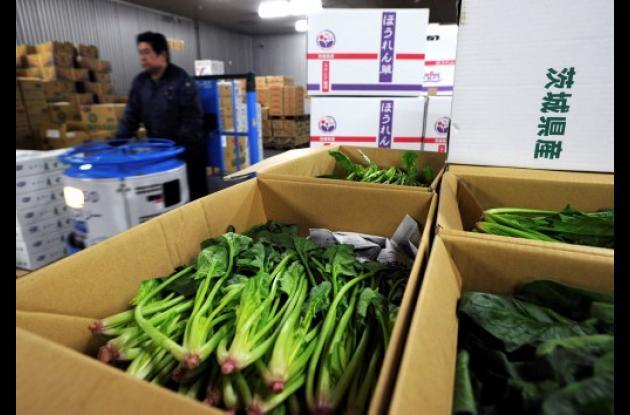 Sigue latente el peligro de contaminación de alimentos en Japón.