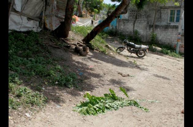 Barrio El Reposo de Cartagena