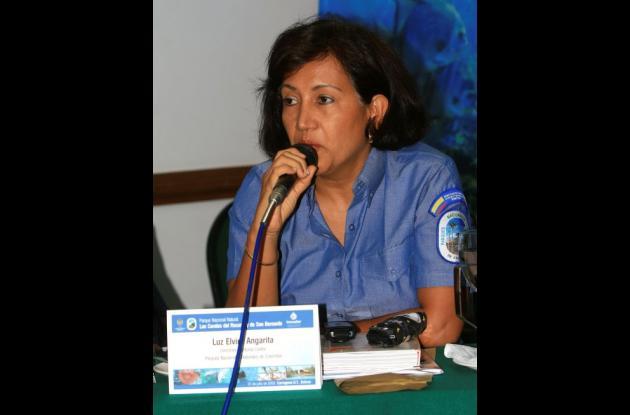 Luz Elvira Angarita.