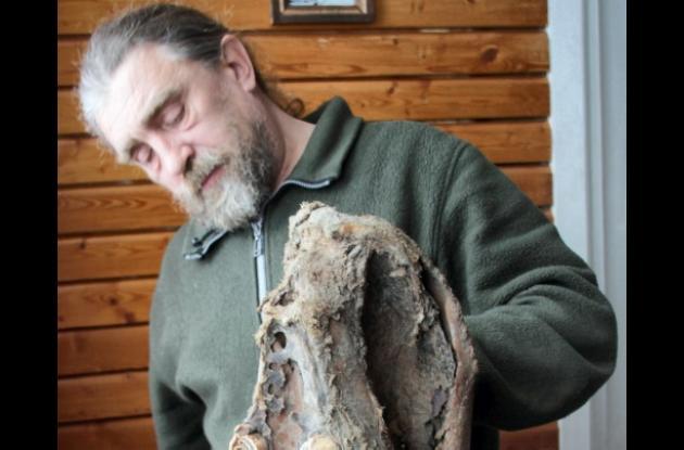 Científicos analzan posible causa de desaparición de mamut.