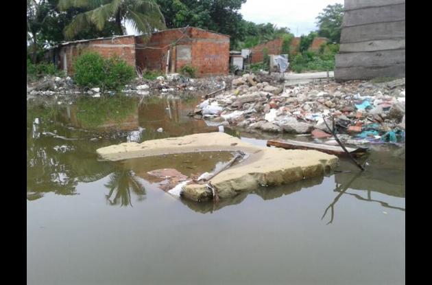 basura en manglares