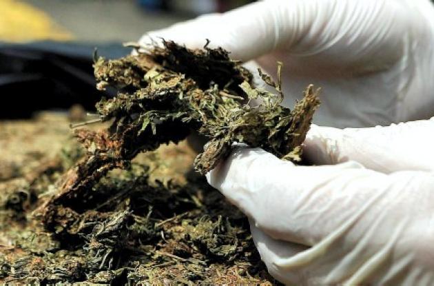 Drogas sintéticas son más usadas ahora que la misma marihuana.