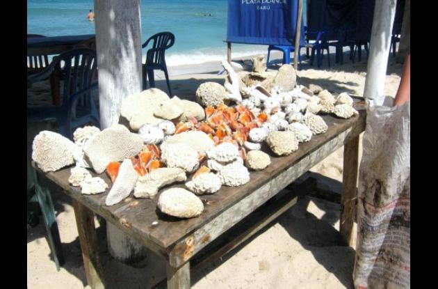 campaña de regreso al mar, decomisan, material biológico