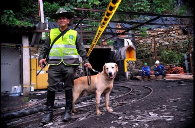 Fiscalía investigará a dueños de mina La Preciosa