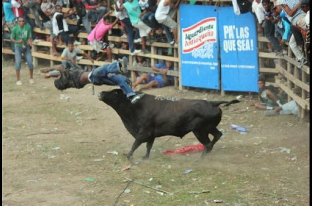 Corralejas en Arenal.