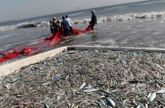 Los océanos se están acidificando más rápido de lo que se creía.
