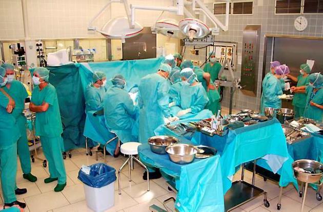Los órganos serán donados con fines terapéuticos o científicos