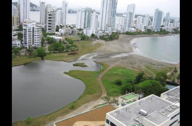 Algas, responsables del cambio de color del agua de El Laguito.