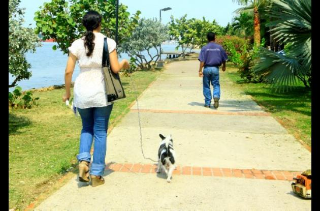perros, paseo peatonal manga,