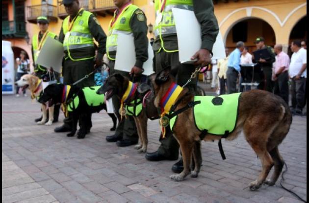 Condecoran perros
