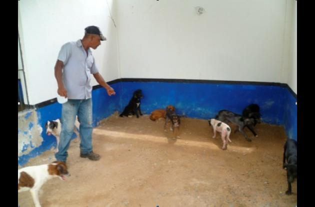 perros barrio españa cartagena