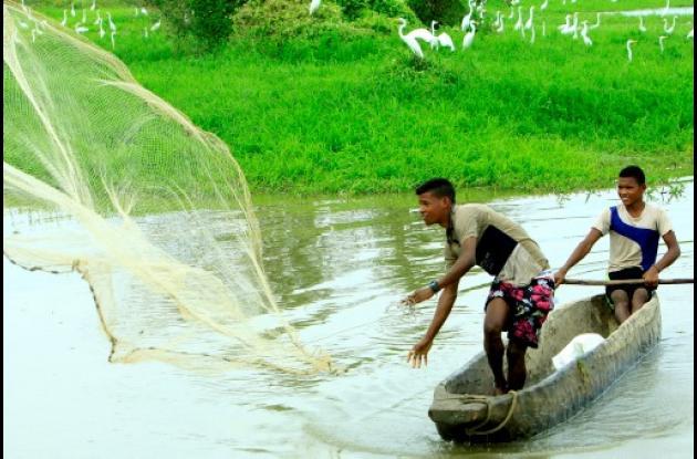 Pescadores artesanales, población campesina, desplazados, entre otros grupos, pu
