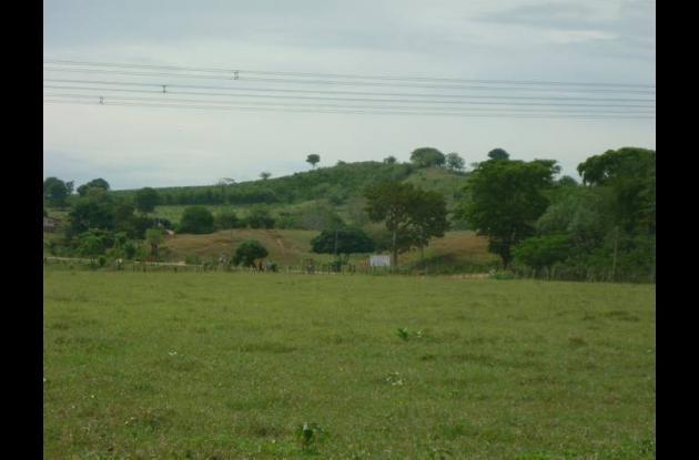 El predio conocido como Ana María o Rodelo, en El Guamo, del que fueron desaloja