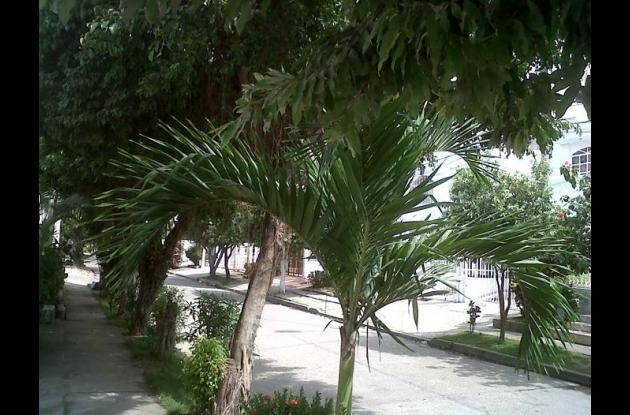Sigue la queja de la comunidad por los atracos en Santa Lucía.