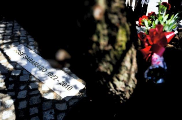 Árbol de olivo donde descansan los restos de José Saramago.