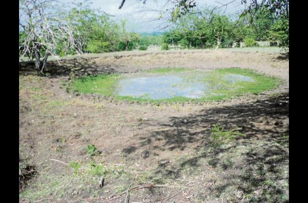 Totalmente secas están las represas en el corregimiento de Granada.