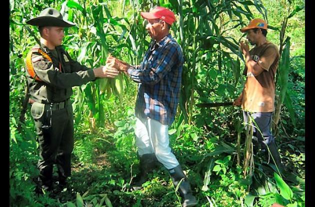 Familias de bajos recursos de Las Huertas vienen sembrado